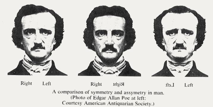 a literary comparison of literature by nathaniel and poe Literary devices: literature (short stories/novels) a comparison to clarify an action or a relationship literary devices: poetry ap literature & composition.