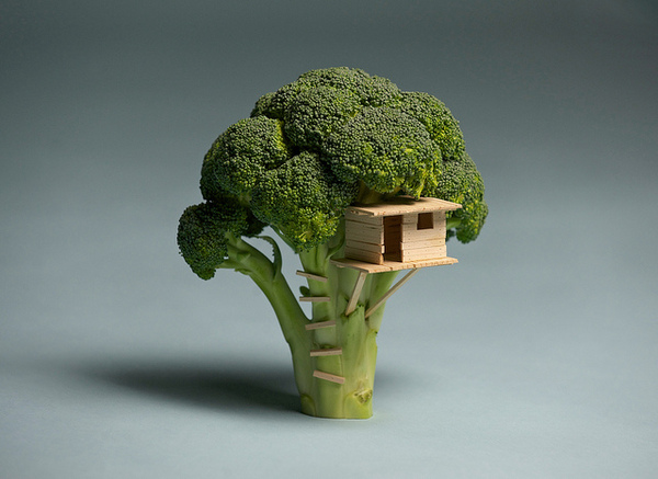 Brock Davis - Broccoli House